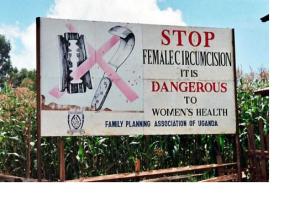blog FGM1